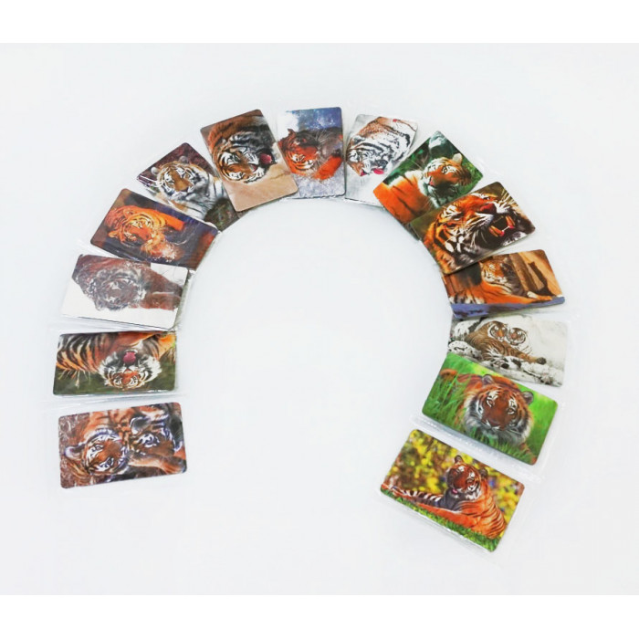 """Set of magnets """"Year of the Tiger"""" 15 pieces"""